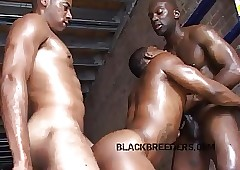 muscle girl sex - young ebony sex